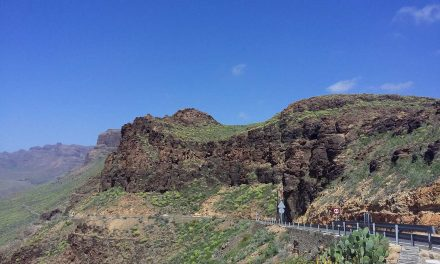 I fell in love with the Canary Islands